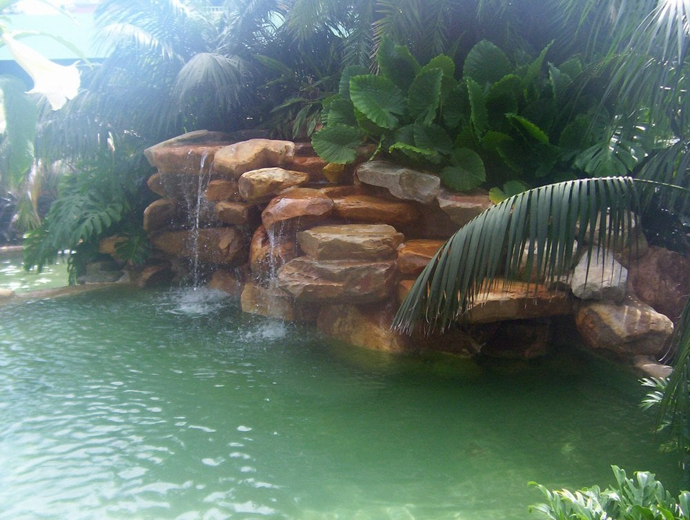 Tropical paradise pool and waterfall yelp - Crystal pools waterfall ...
