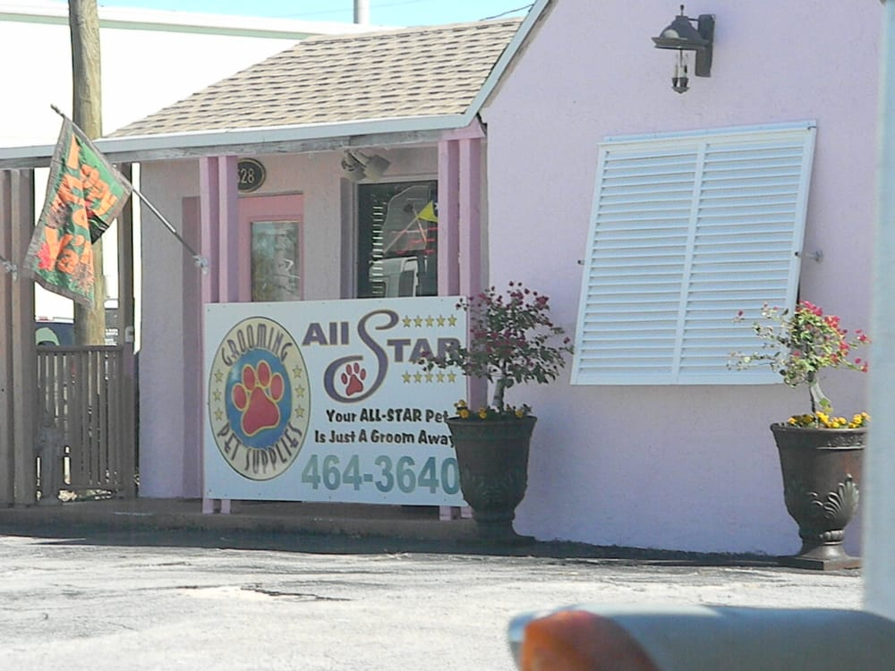 All star grooming and pet supplies pet boarding pet for Five star dog resort