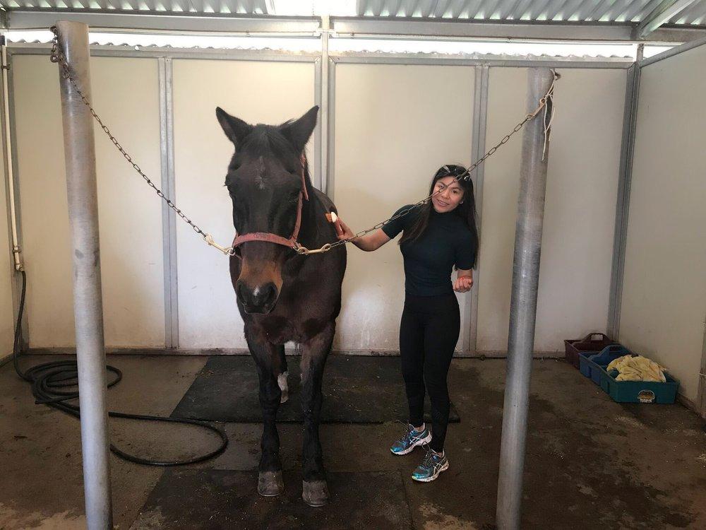 Miller Equestrian Services 22 Photos Amp 10 Reviews