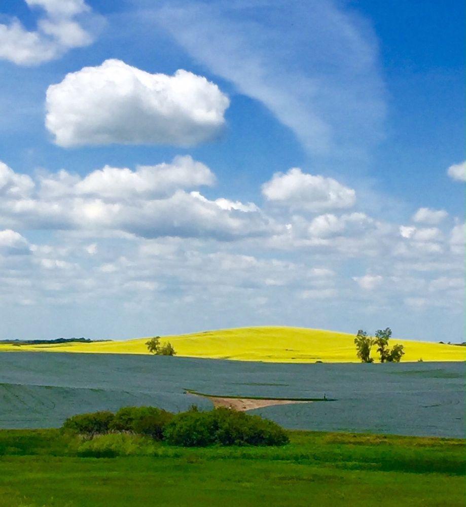 Photo of Crosby Meadows: Crosby, ND