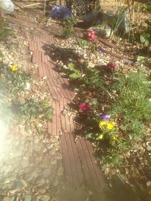 Photo Of 19th U0026 O Community Garden   Sacramento, CA, United States. Flowers