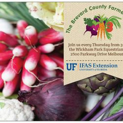 Brevard County Farmers Market - 18 Photos - Farmers Market