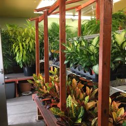 Photo Of Brookwood Nursery San Francisco Ca United States Fair Prices On