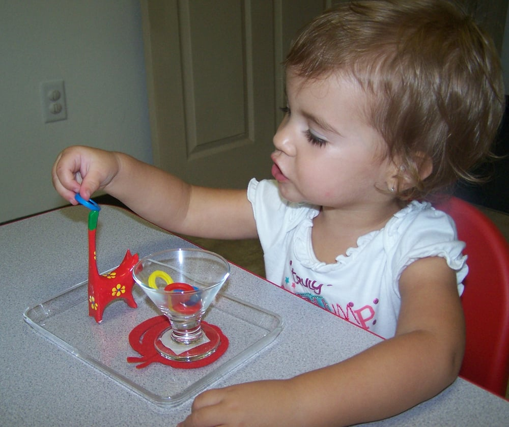 The 2 year old is concentrating in our practical life area for Montessori fine motor skills