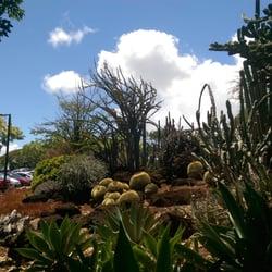 Photo Of KCC Cactus Garden   Honolulu, HI, United States. Fulfills All My