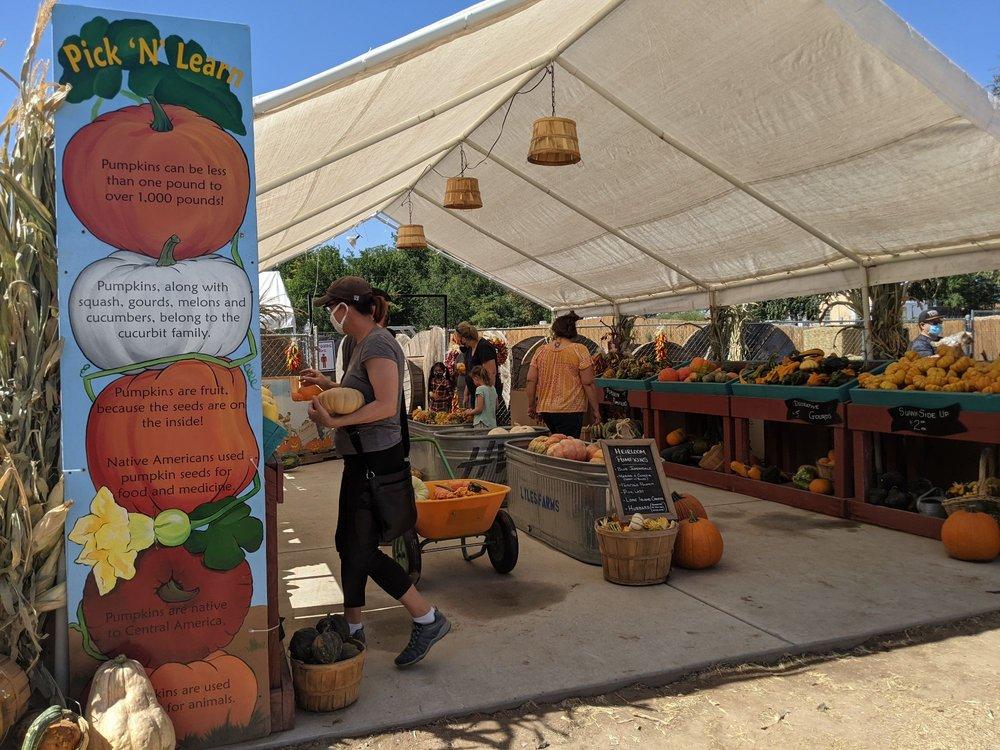 Social Spots from The Mesilla Valley  Maze