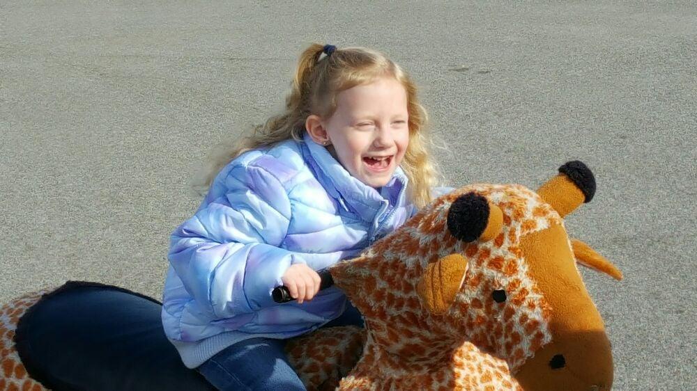 Running Wild Inflatables: Soddy-Daisy, TN