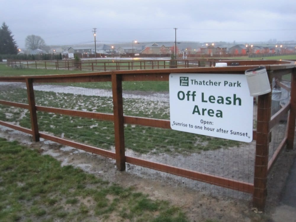 Thatcher off leash dog park some people are calling it for Forest grove plumbing