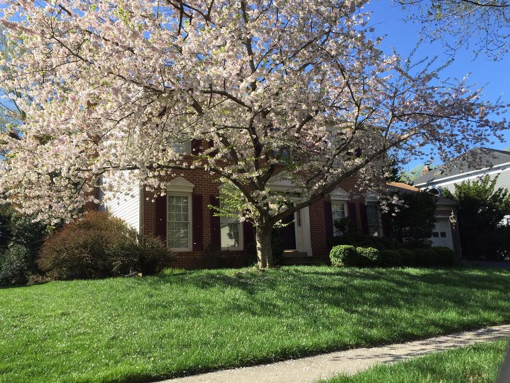 Hometown Properties: 4931 Tesla Dr, Bowie, MD