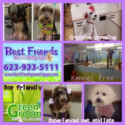 Best Friends Dog Grooming Surprise Az