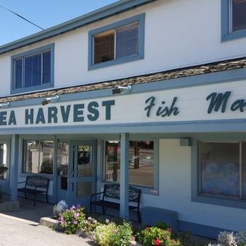 Sea harvest fish market restaurants 675 photos for Fish market monterey ca