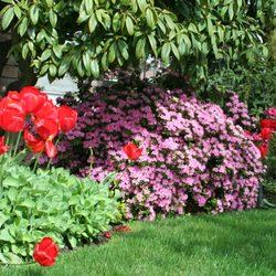 Photo Of Zook U0026 Oleson Gardening   Seattle, WA, United States