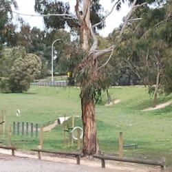 Dog Park Ferntree Gully
