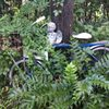 Azalea Plantation Bed & Breakfast