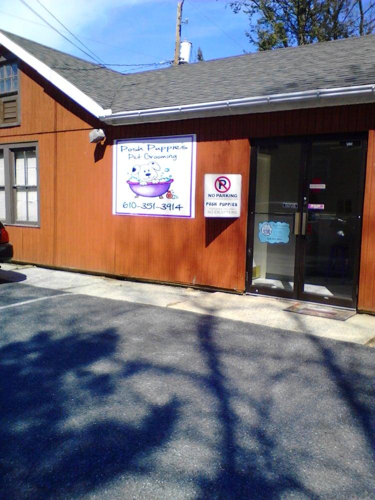 Posh Puppies: 2325 Walbert Ave, Allentown, PA