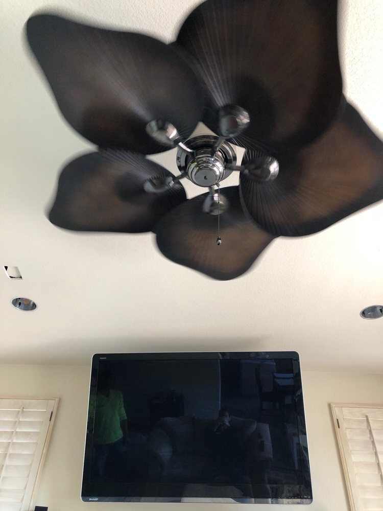 Our ceiling fan and two out of the 4 canister lights yelp photo of electric lee san diego ca united states our ceiling fan aloadofball Choice Image