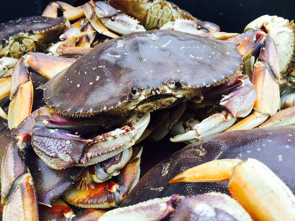 Black Rock Seafood: 8991 Stevenson Rd, Anacortes, WA