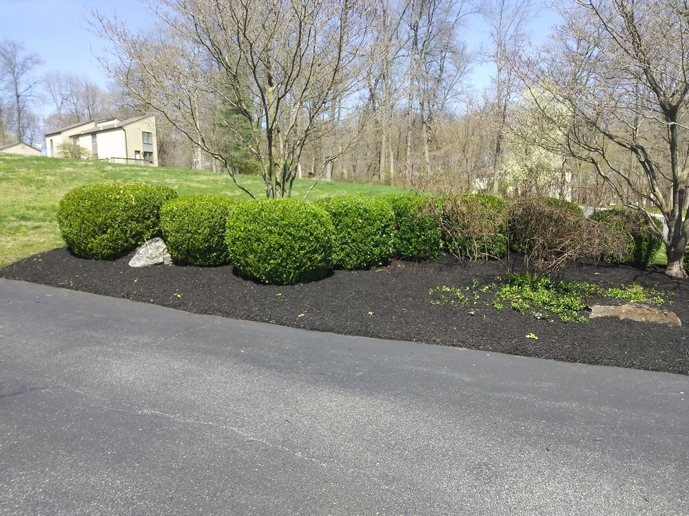 Jose Landscaping: Coatesville, PA
