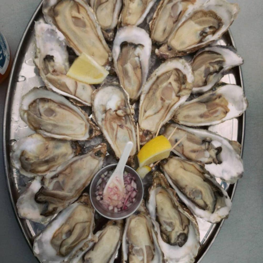 Jakolof Bay Oyster: 1397 Lake Shore Dr, Homer, AK