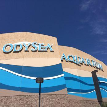 Photo Of OdySea Aquarium   Scottsdale, AZ, United States. Very New And  Upscale