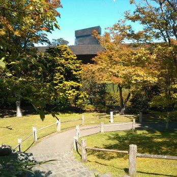 Golden gate park 2328 photos 1071 reviews parks for Jardin japones hagiwara de san francisco