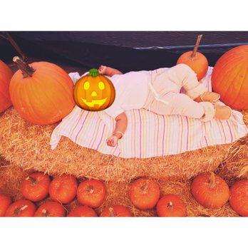 pumpkin patch near los angeles
