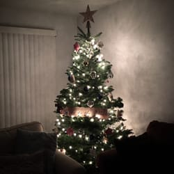 photo of holman road christmas trees seattle wa united states the final