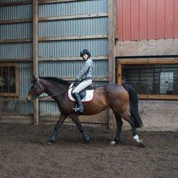 Legacy Equestrian Center Horseback Riding 5940