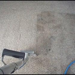 Res Carpet Clean Room3