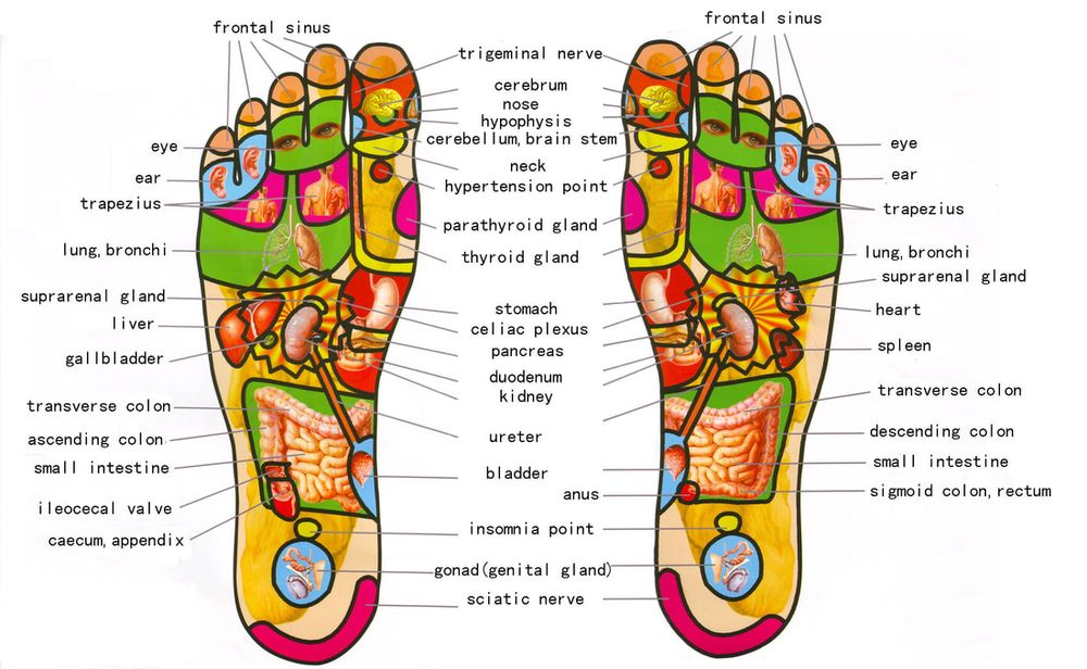 Best Foot Forward: 1350 N Preston Rd, Prosper, TX