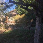 Phoenix Anese Friendship Garden