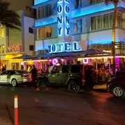 Pythons On The Photo Of Colony Hotel Miami Beach Fl United States