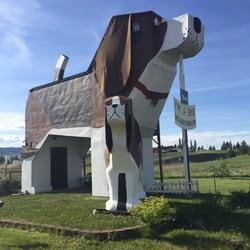 Photo Of Dog Bark Park Inn   Cottonwood, ID, United States. Sweet Willy