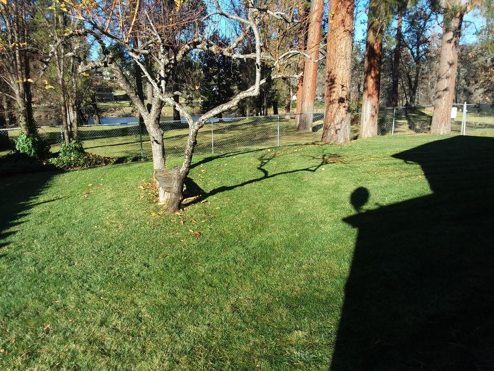 Eagle Point Lawncare & Landscape Maintenance: 151 W Linn Rd, Eagle Point, OR