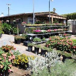 Photo Of Desert Hot Springs Florist Ca United States