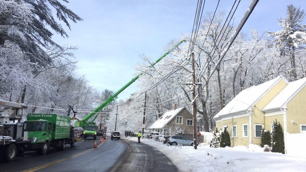 Iron Tree Service: 64 Dunham Rd, Beverly, MA