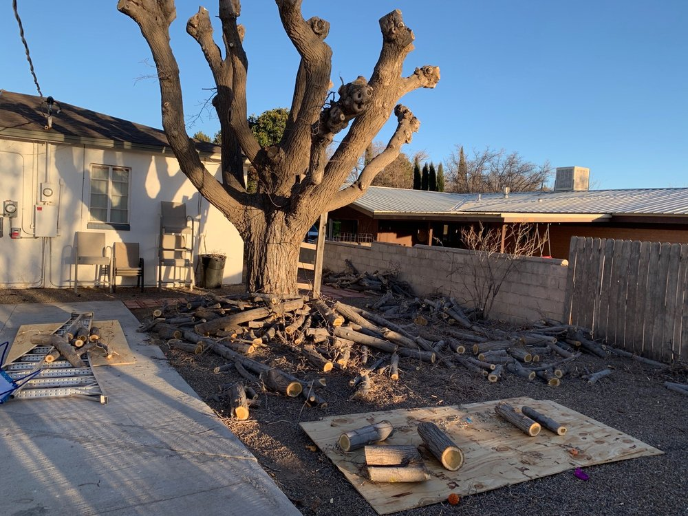 Next Level Landscaping & Excavation: Deming, NM