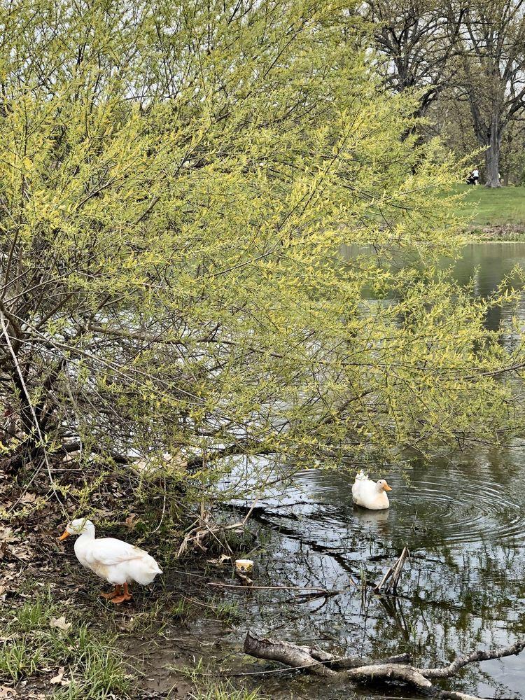 Long Run Park: 1605 Flat Rock Rd, Louisville, KY