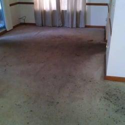 photo of kiwi clean atlanta ga united states we had to apply
