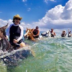 Photo Of Cypress Breeze Beach Horseback Rides Saint Petersburg Fl United States