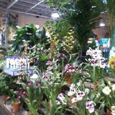 Photo Of Armstrong Garden Centers Dublin Ca United States Indoor Plants