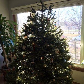Ben's Christmas Tree Farm - 11 Reviews - Christmas Trees - Harvard ...