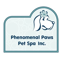 Phenomenal paws pet spa hundeklipning 4549 29 avenue for 4 paws pet salon
