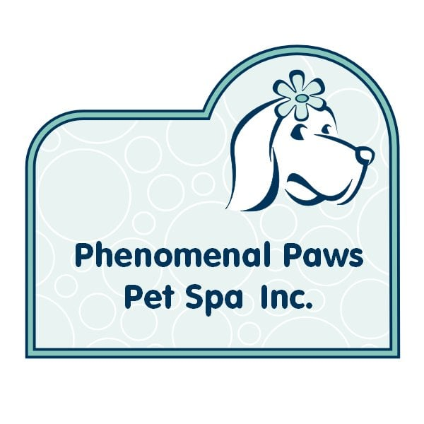 Phenomenal paws pet spa pet groomers 4549 29 avenue nw for 4 paws pet salon