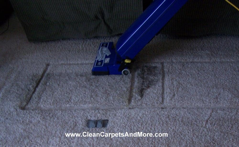 Clean Carpets & More: Saint Cloud, MN