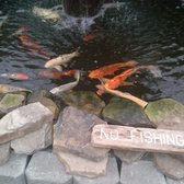 Photo Of Atlanta Water Gardens   Atlanta, GA, United States. They Have The