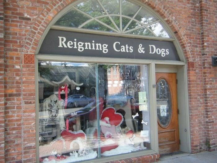 Tierbedarf Cats  Dogs