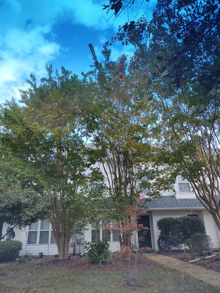 Your Memories Remembered: 48281 Picketts Harbor Ct, Lexington Park, MD