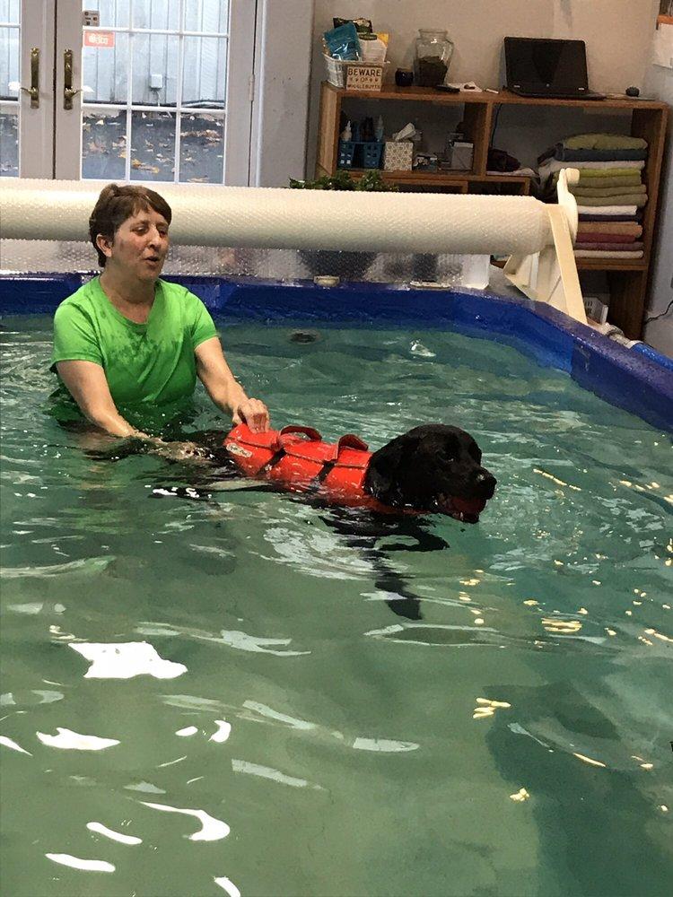 Splash Canine Hydrotherapy & Recovery: 20413 NE 29th Ave, Ridgefield, WA