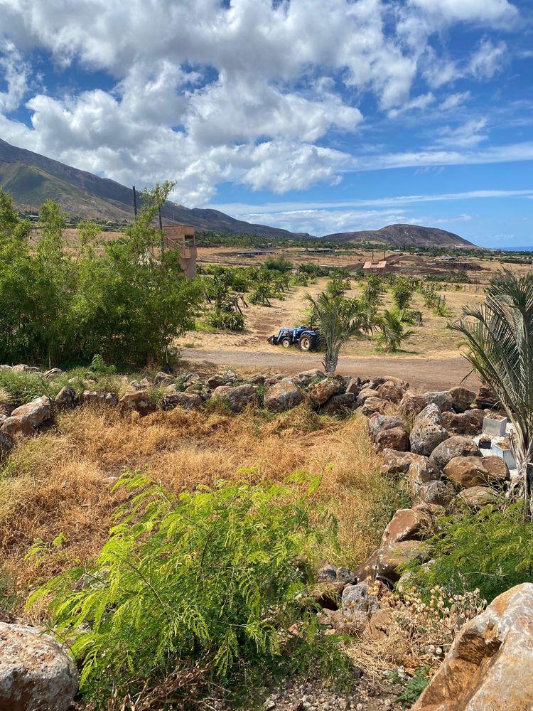 Paradise Eco-Adventures: 833 Punakea Lp, Lahaina, HI